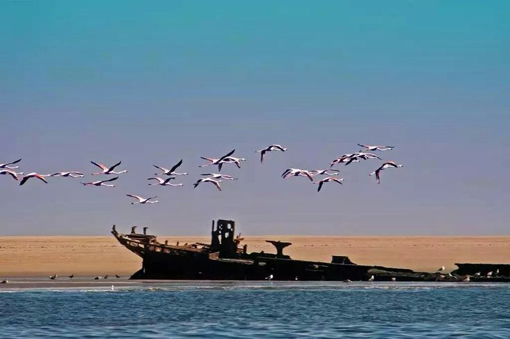 Pelican Point, Walvis Bay, Namibia