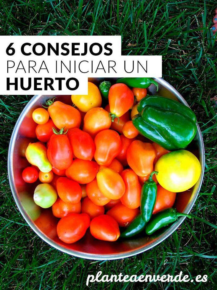 6 consejos para iniciar un huerto