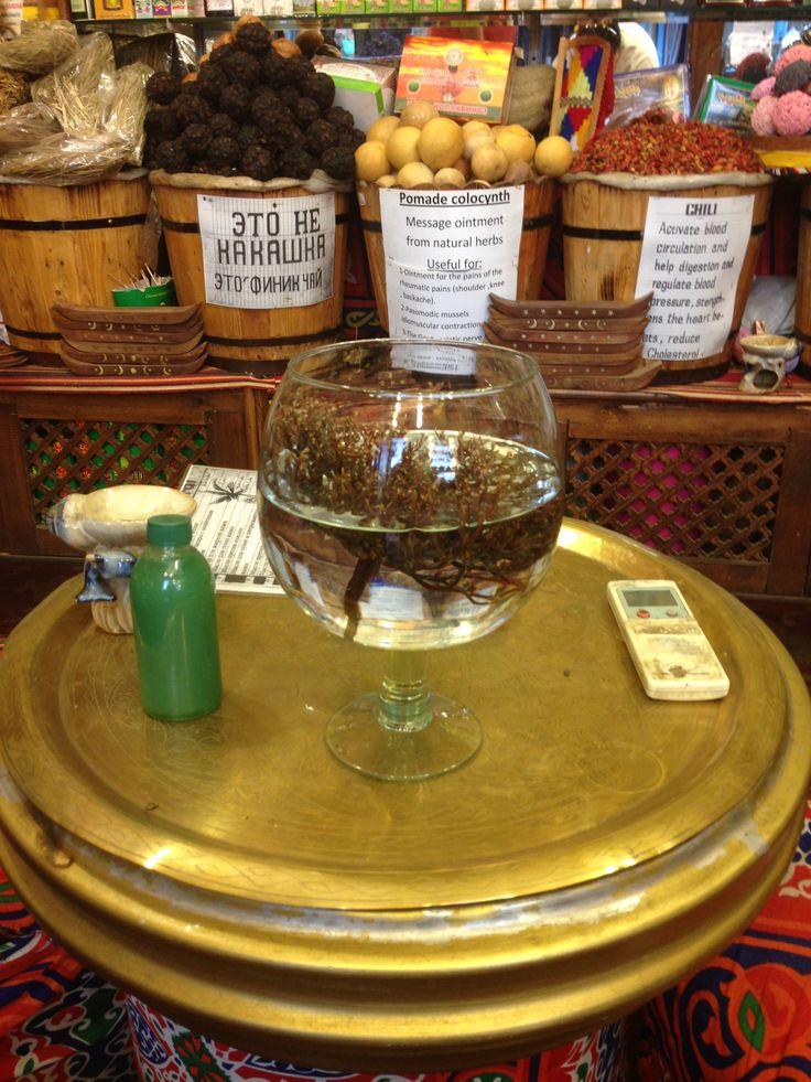 Desert rose in a jar