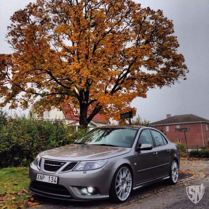 77cdcde293bc2ced932712148957c4c0 creme minimalism 107 best saab images on pinterest car, dream cars and vehicles  at alyssarenee.co