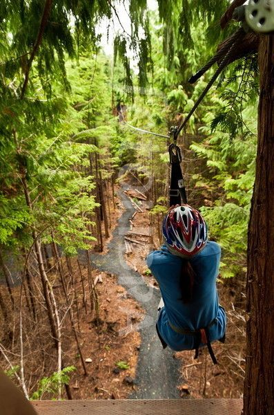 Zipline adventure, Ketchikan, Alaska. I did this with my husband and it was awesome.