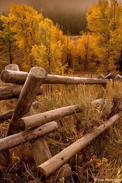 Autumn in Jackson Hole, Grand Tetons National Park, Wyoming