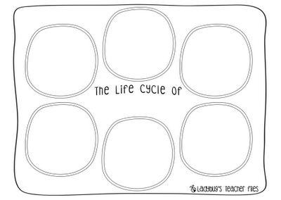 Ladybug's Teacher Files: Salmon Life Cycle poster & free worksheets