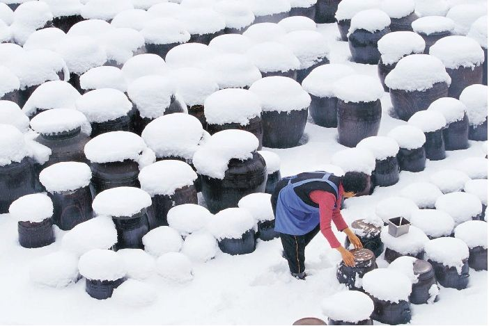 A winter scene of traditional urns, covered in snow, storing a variety of fermented and fermenting foods.