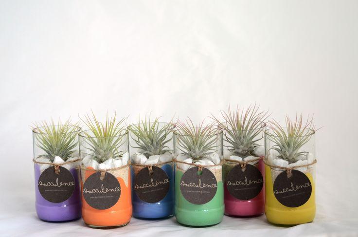 Perfect house plants for those without a balcony (i.e. me)