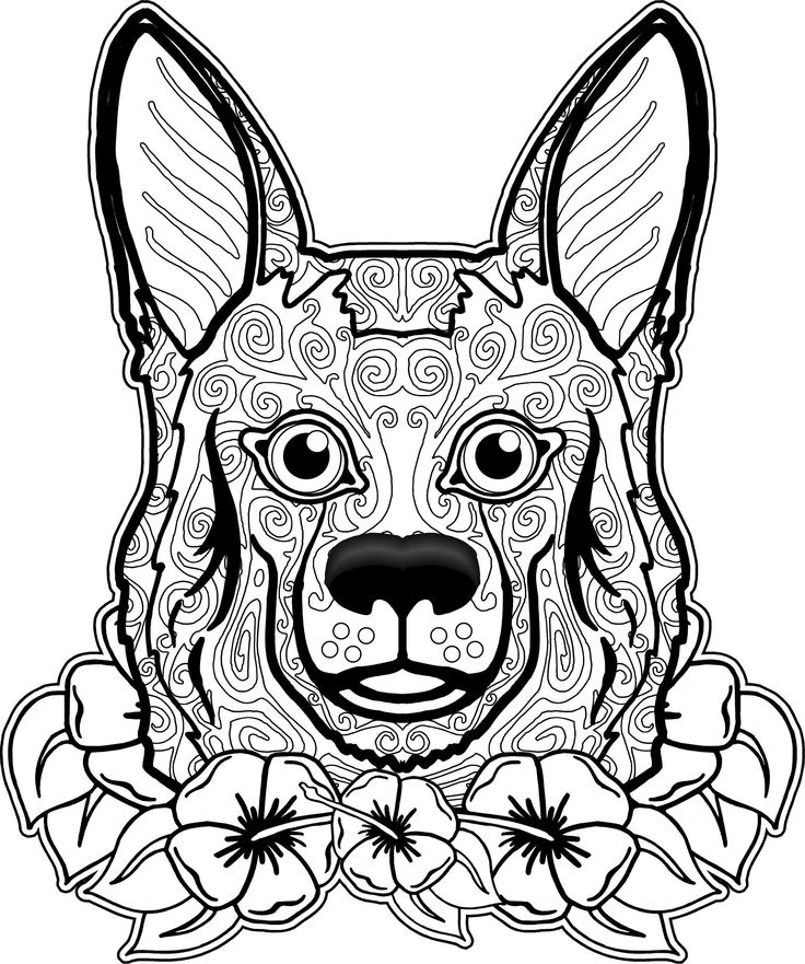 103 best Coloring Pages (Dogs, Wolves, Foxes) images on Pinterest ...