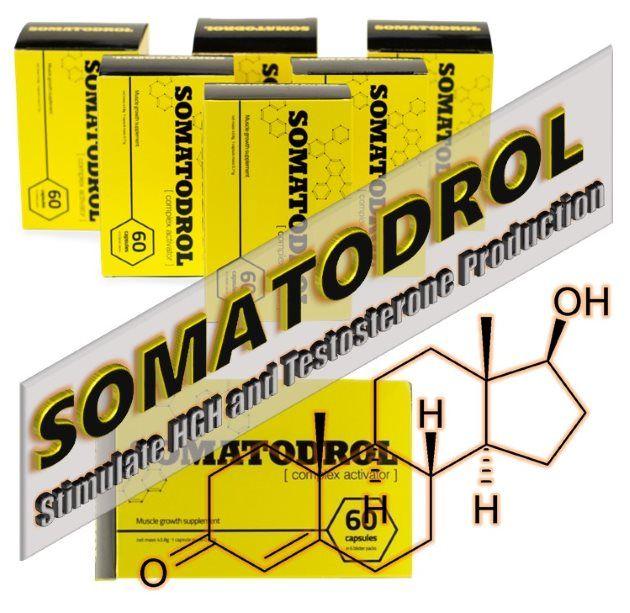 Somatodrol es un suplemento que contiene varios activadores de producción hormonal, cuyo objetivo es proporcionar a tu cuerpo el material necesario para producir más testosterona y HGH (hormona del crecimiento) de forma natural, sin los efectos secundarios que los esteroides anabólicos causan.
