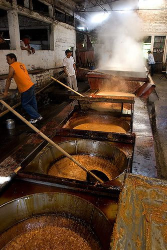 Trapiche,sugarcane factory
