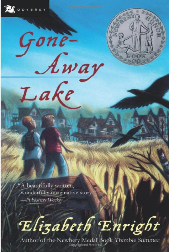 Gone Away Lake Something To Do Book Review explores the story written by Elizabeth Enright & fun activities that bring this book to life.