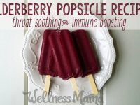 Elderberry Popsicles Recipe (Soothing for Sore Throats)