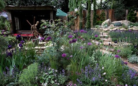 The Rhs Chelsea Flower Show 2019 All The Gardens And Medal