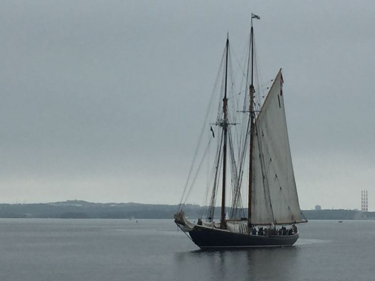 The Bluenose II sailing in Bedford Basin.