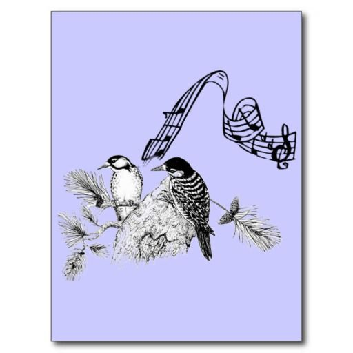 >>>Are you looking for          Vintage Birds Post Card           Vintage Birds Post Card This site is will advise you where to buyHow to          Vintage Birds Post Card Online Secure Check out Quick and Easy...Cleck Hot Deals >>> http://www.zazzle.com/vintage_birds_post_card-239549111594977320?rf=238627982471231924&zbar=1&tc=terrest