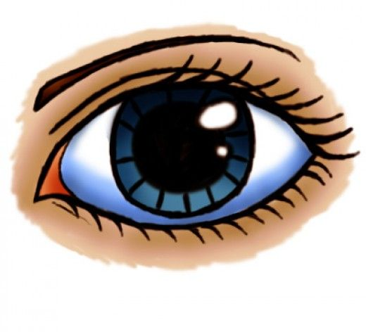 How to draw a cartoon eye (female)