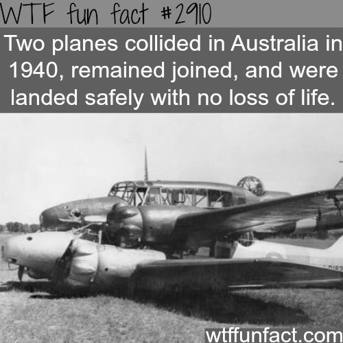 Awesome plane crash -WTF fun facts