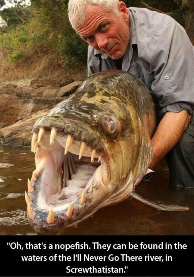 I bow down to Jeremy Wade.
