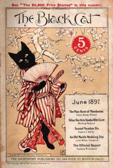 """""""The Black Cat"""" magazine - June 1897 - cover by Nelly Littlehale Umbstaetter"""