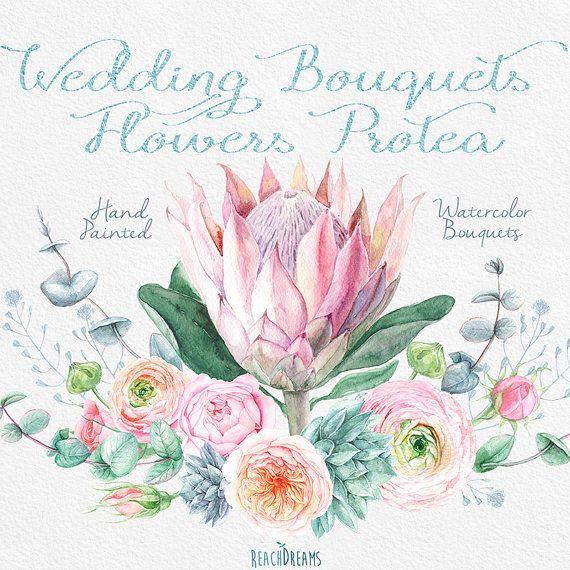 Acuarela de novia Ramos flores Protea rosas por ReachDreams en Etsy