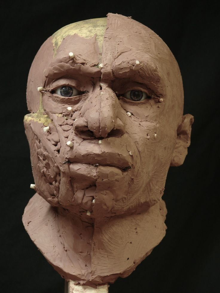 relationship of neanderthals to modern humans Ancient mitochondrial dna from the femur of a neanderthal helps to resolve the complicated relationship between modern humans and neanderthals.