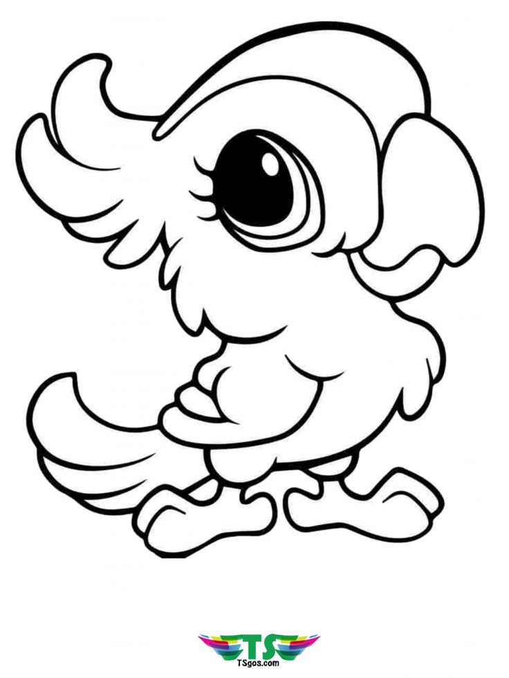 Pin on bird coloring pages for kids