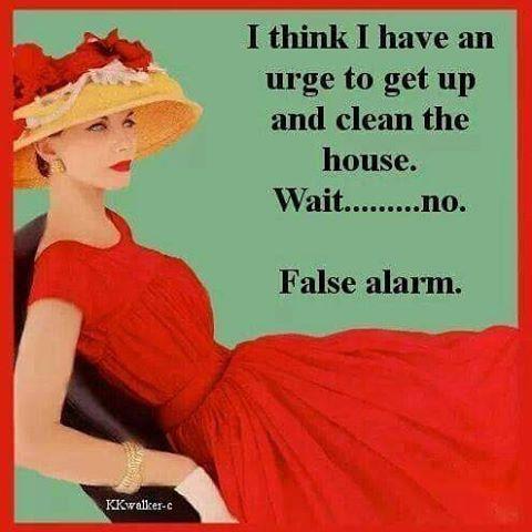 Haha!! #boring #housework #dontwannadoit #notfun #idratherbeknitting #funnies