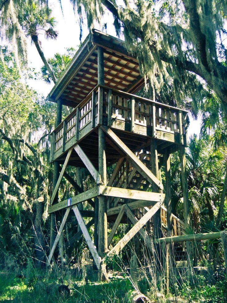 Image result for backyard observation tower  Observation shack  Lookout tower Pole house