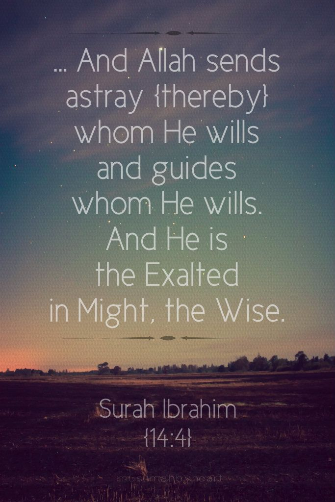Allah sends astray those whom He wills ans guides whom He wills. And He js the Exaltes in Might, the Wise. Quran 14:4