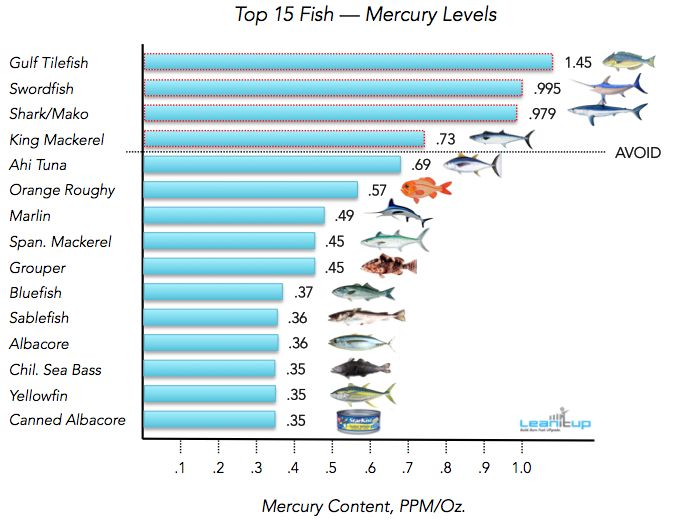 25 best ideas about mercury in fish on pinterest for Mercury fish pregnancy