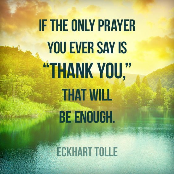 "If the only prayer you ever say is ""thank you"", that will be enough. – Eckhart Tolle thedailyquotes.com"