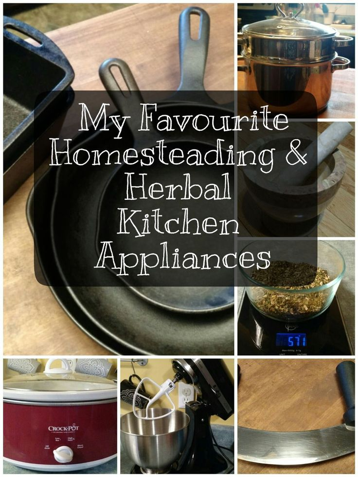 My Favourite Homesteading and Herbal Kitchen Appliances