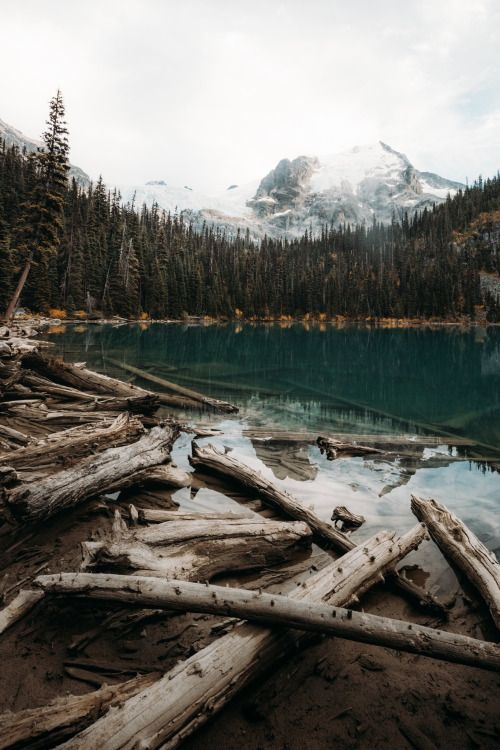 tryintoxpress: Joffre Lake - Photographer Lifestyle - Nature...