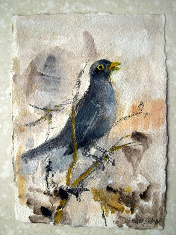 Basil Blackshaw, Blackbird of Belfast Lough