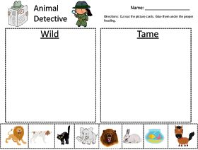 School Happenings: Wild Animals vs. Tame Animals