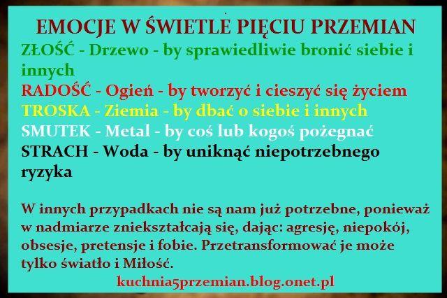 Blog Michala Ostrowskiego Kuchnia Pieciu Przemian