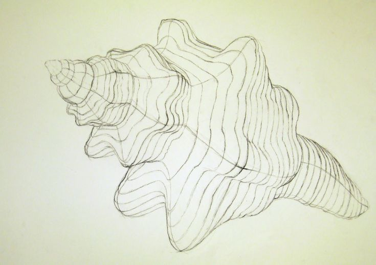 Contour Line Drawing Examples : Best cross contour line drawings images on pinterest