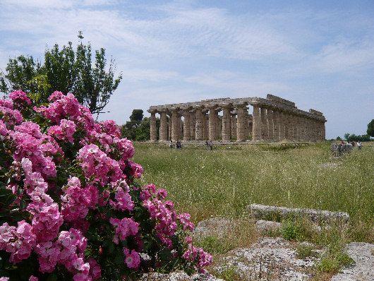 Tempio di Hera Paestum #paestum #archeology #spiagge #italy #pompei #hotelpaestum #faunopompei #travel #sea #archeologia