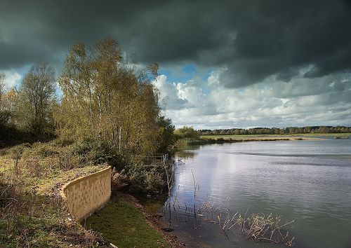 """Blashford Lakes: """"The nature reserve at Blashford Lakes, just outside Ringwood, shows what use can be made of abandoned gravel pits. Administered by the Hampshire & Isle of Wight Wildlife Trust (HIWWT), the Blashford Lakes Project runs many programmes."""" www.bradtguides.com"""