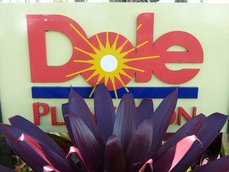 Day 6: Dole Plantation, Polynesian Cultural Center & Farewell to Aulani