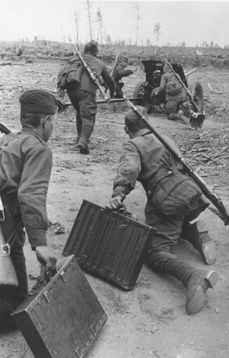 Karelian Front, undated: Red Army artillery element move a 45mm anti-tank gun into position under enemy fire. Note the crew carrying metal cases with shells.