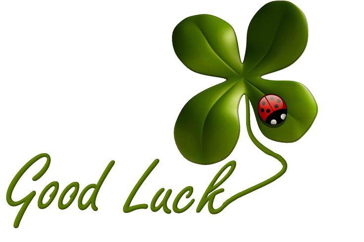 Luck, Lucky Clover, Ladybug, Symbol, Grassland Plants