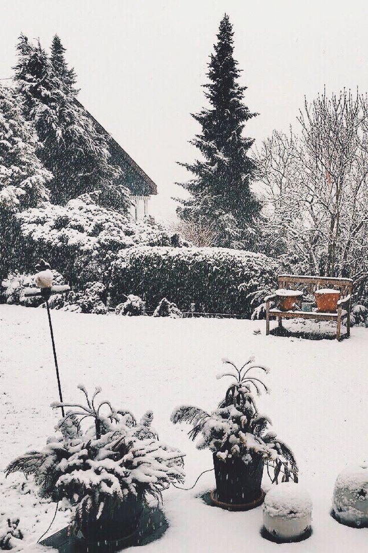 A winter wonderland in Bern!