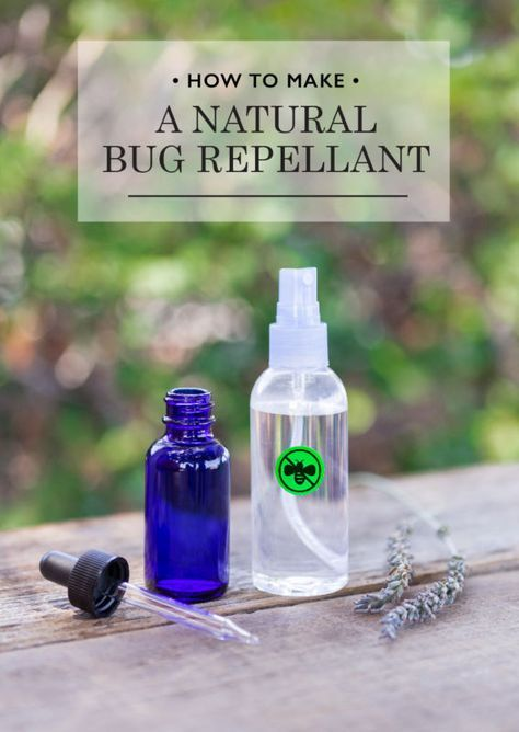 How to Make a Natural Bug Repellant | eBay #ad #bug #repellent #repellant #diy