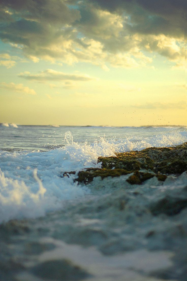 by the sea... I...: Beaches, The Rocks, Sunsets, The Ocean, Ocean Waves, Sunri, The Waves, Photography, The Sea