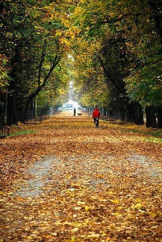 Central Park, Cluj Napoca, Romania