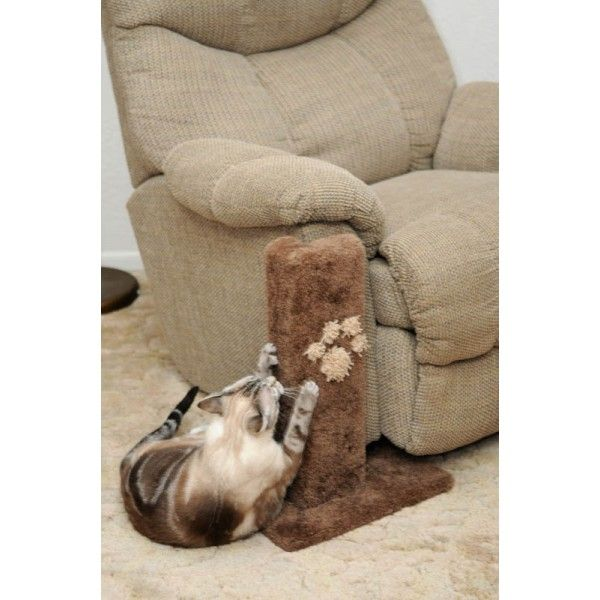 Best 25 Scratching Post For Cats Ideas On Pinterest Diy Cat Scratching Post Cat Scratching