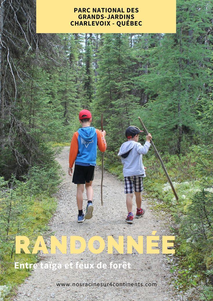 Randonnées familiales dans deux sentiers de la #sepaq (La Chute et Le Brûlé) dans le Parc national des Grands-Jardins (Charlevoix, Québec). #grandsjardins #charlevoix #quebec