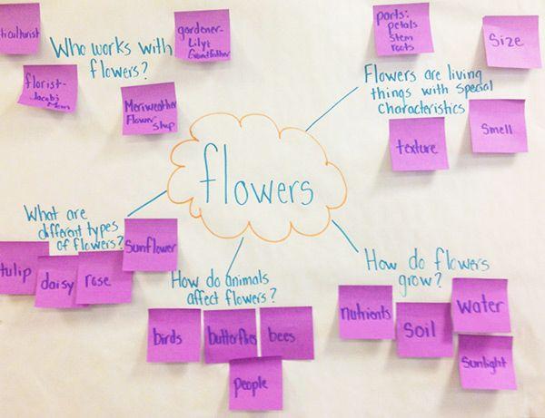 Teaching strategies gold creative curriculum and teaching strategies