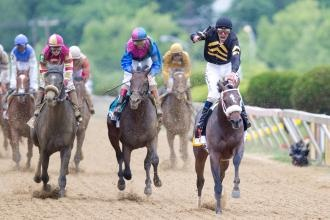 Preakness Stakes: Oxbow leads throughout under Gary Stevens; Orb fourth at 3-5