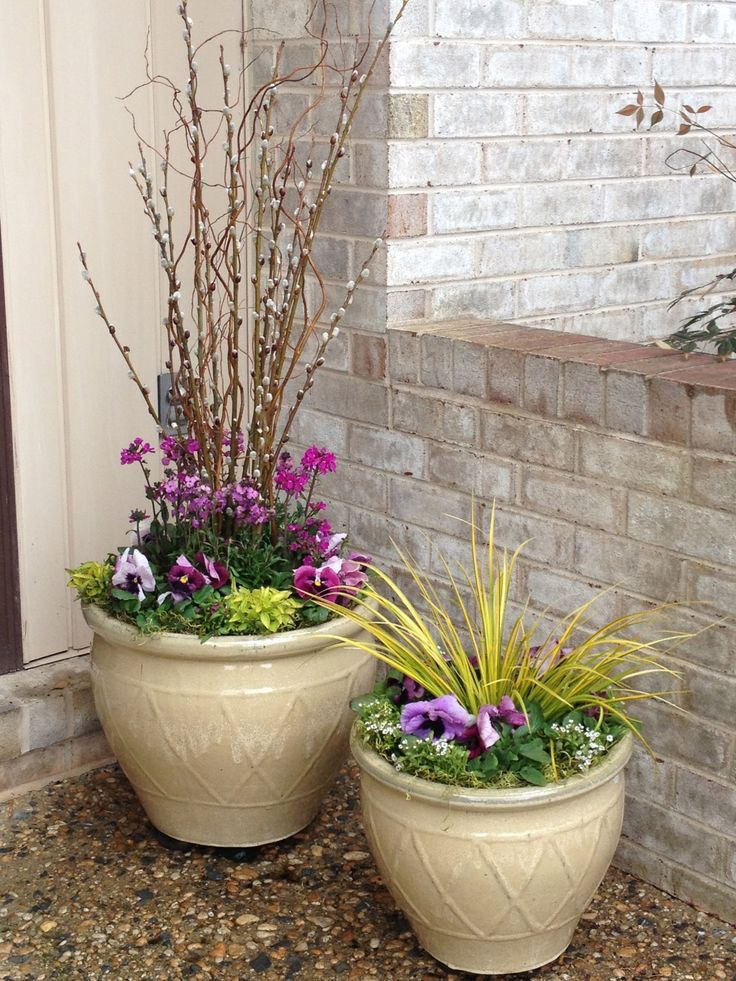 Spring to it!  Spring container garden, pussy willow, curly willow, pink pansies, golden oregano, sweet flag, alyssum BLOOM