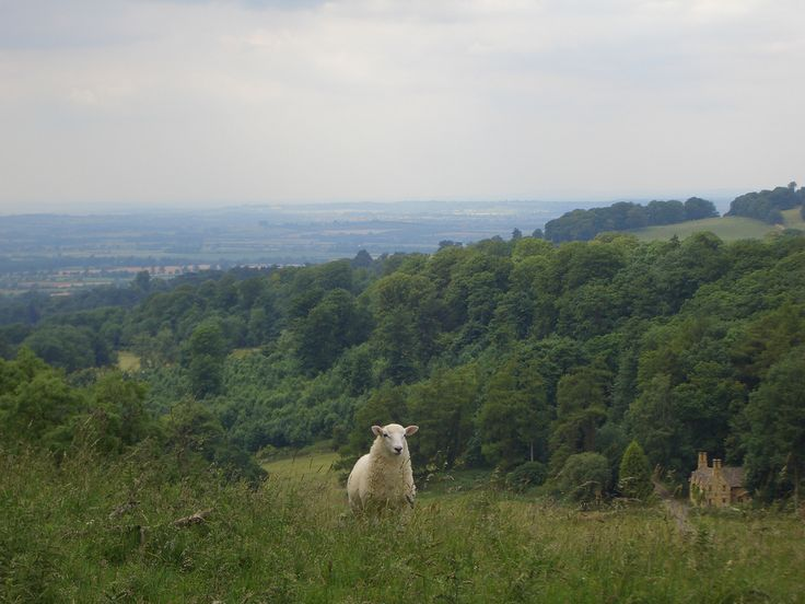 My Favorite Walk On The Cotswold Way Above Wood Stanway